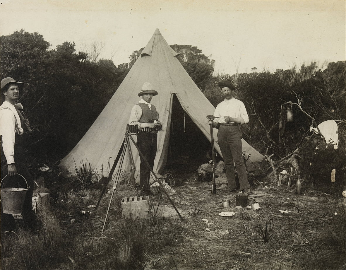 Camp View, Feld Naturalists Club-Expedition nach King Island von Archibald James Campbell