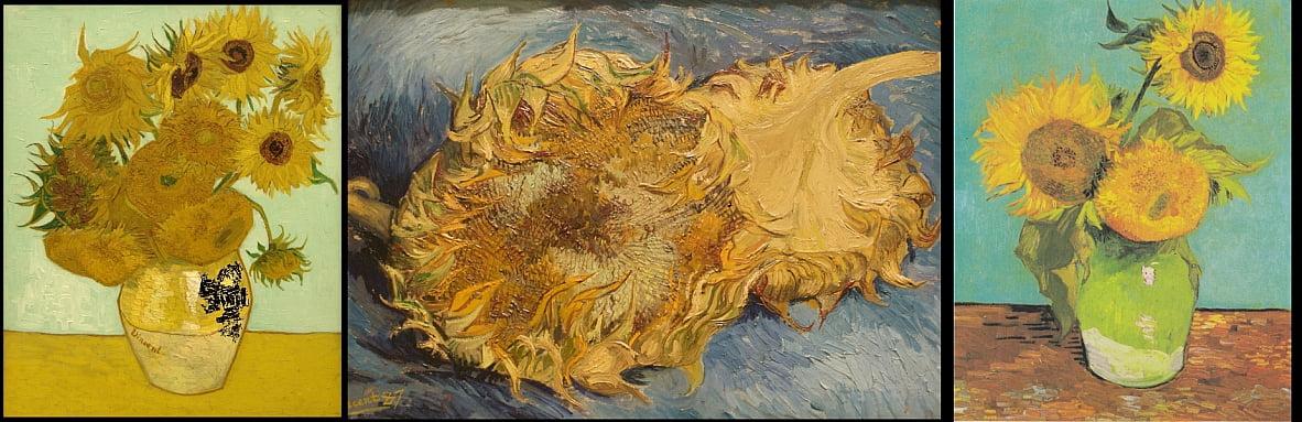 Stilleben Mit 12 Sonnenblumen Von Vincent Van Gogh 21964